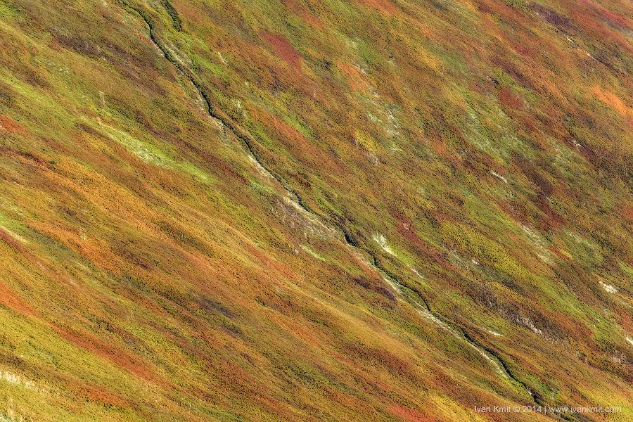 autumncolors2
