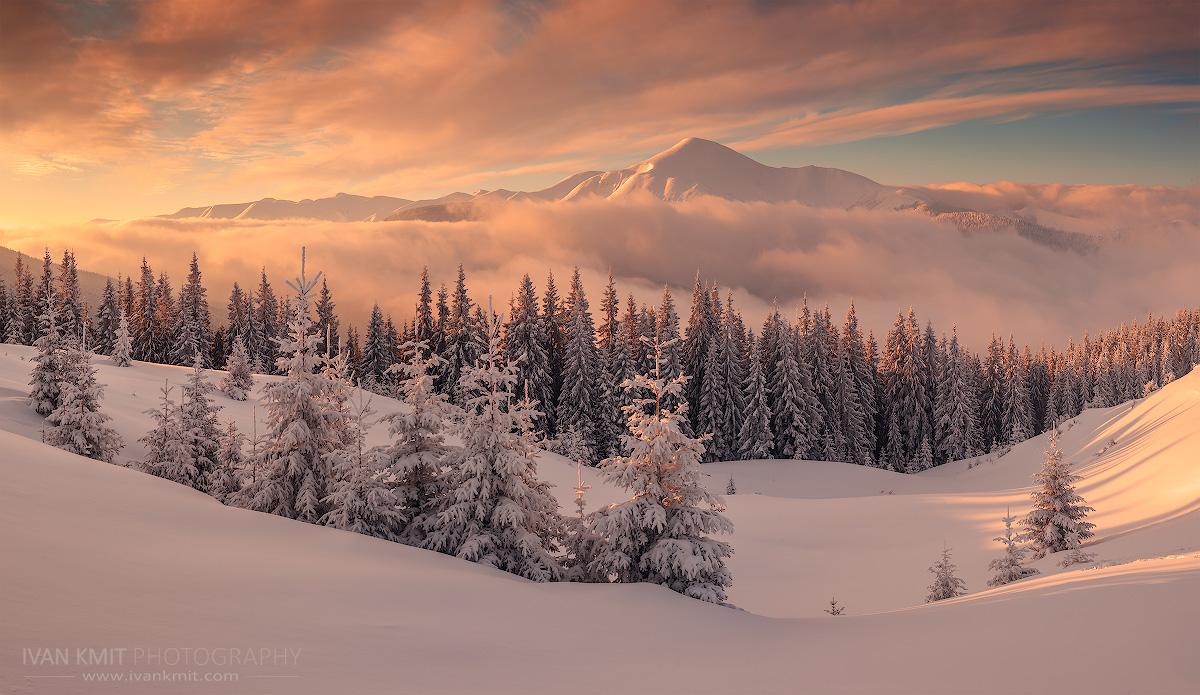 Winter_new3