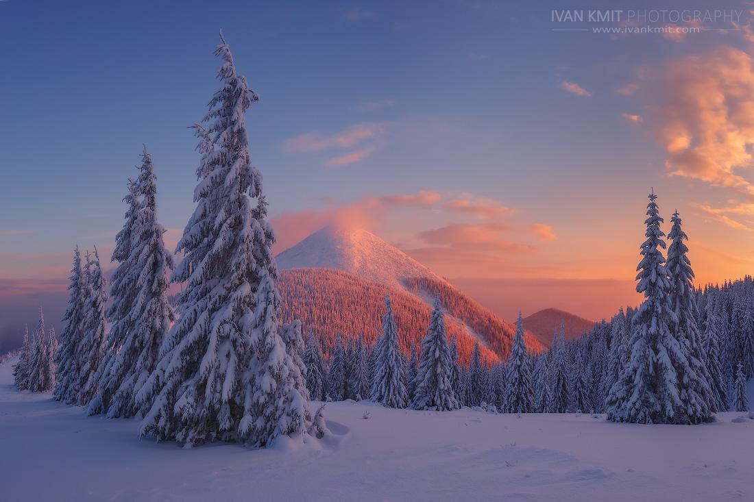 winter48