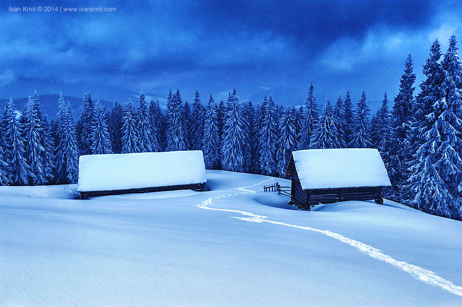 Winter13